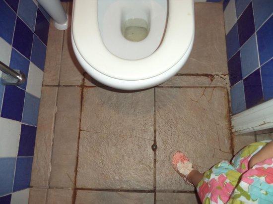 Holiday Village Menorca: Toilets near Bar Area!
