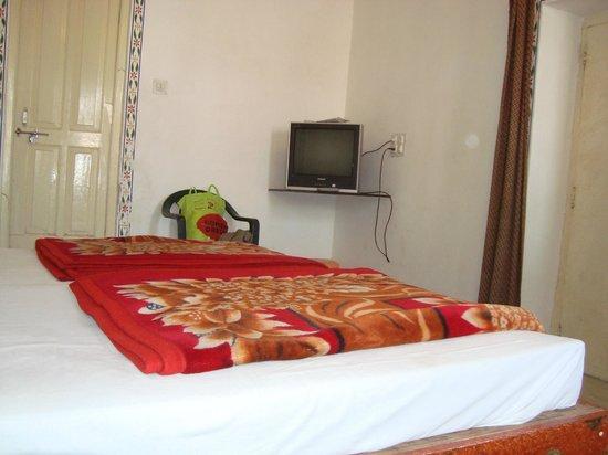 Hotel Gangaur Palace / Ashoka Art: Inside view of room 301