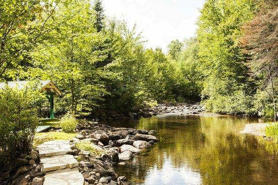 Chaumiere des Tourelles - Gite & Chalet: La rivière du fond