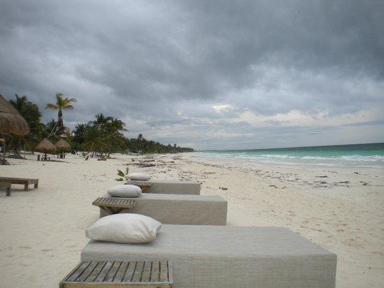 Rosa del Viento: Beach loungers