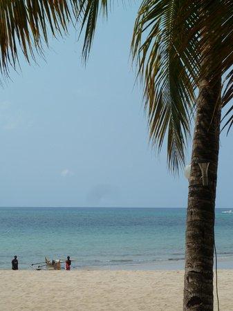 Chez Loulou : La plage