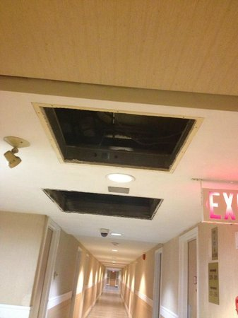 Travelodge Edmonton East : Holes in ceiling