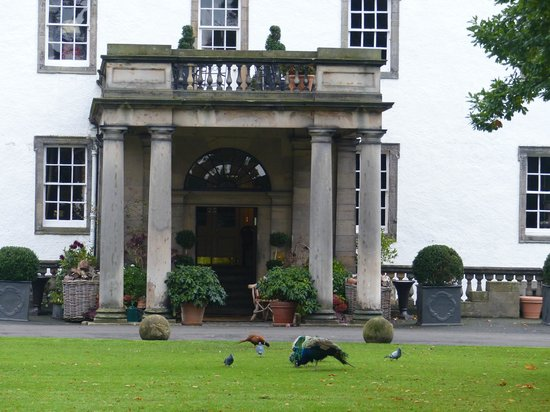 Prestonfield Front Entrance With Resident Pheasant And Peas