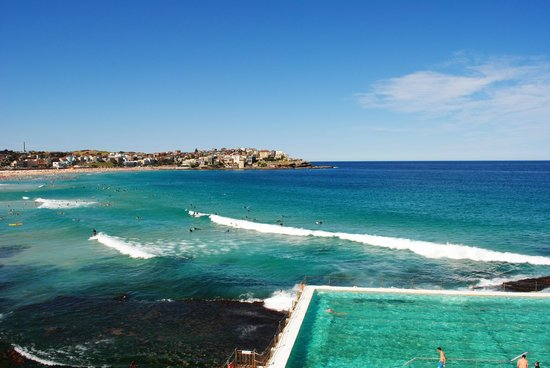 the infinity pool - picture of icebergs dining room & bar, bondi