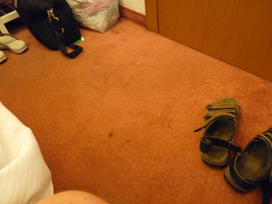 Hotel Carlton: The carpet was filthy