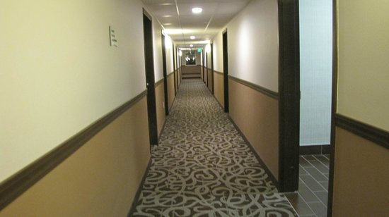 Quality Inn & Suites Pacific - Auburn: hallway