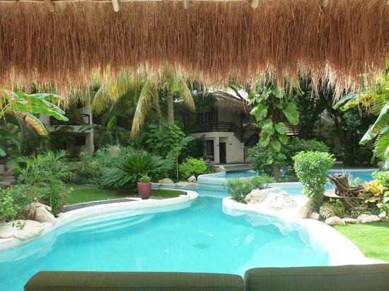La Tortuga Hotel & Spa: Pool area
