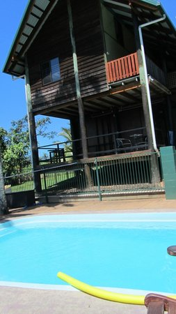 Jackaroo Treehouse Mission Beach : Pool and Hostel