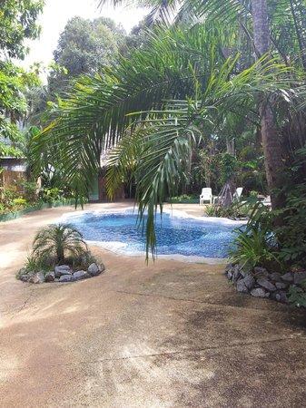 Papillon Bungalows: pool