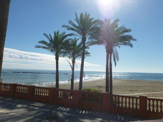 Palm 5 Beach Bar : Views from the Bar