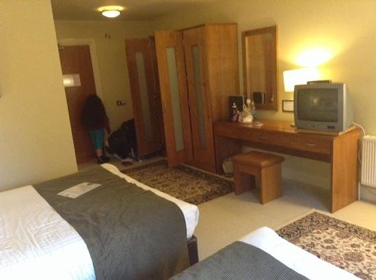 Raheen Woods Hotel: junior suite