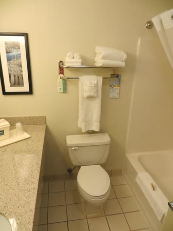 Quality Inn & Suites: Bathroom