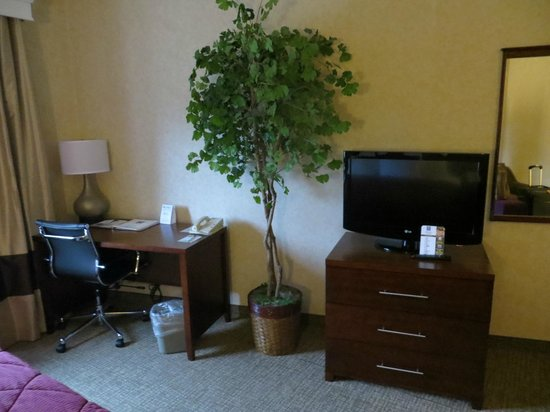 Comfort Inn North - Air Force Academy Area : Desk, TV and interesting plant
