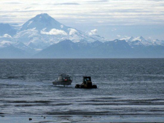 Jimmie Jack's Alaska Lodge: Alaska Halibut Fishing