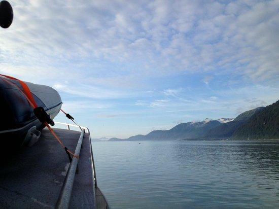 Jimmie Jack's Alaska Lodge: Seward Combo Fishing - Lingcod, Silver Salmon, Rockfish