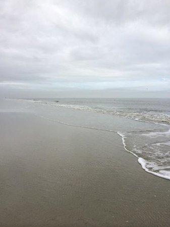 Sonesta Resort Hilton Head Island: endless beach for a perfect run ( or walk)