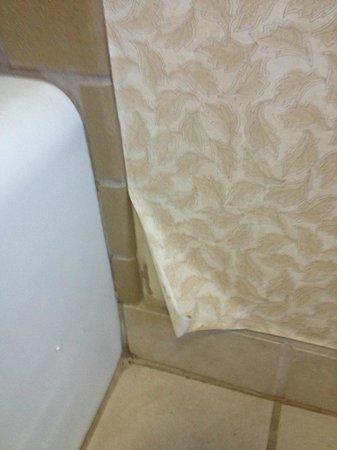 Omni Tucson National Resort : Wallpaper peeling