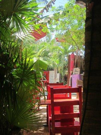Puro Corazon : Gorgeous setting