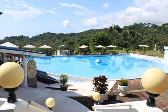 Hotel Cristal Ballena Resort : pool