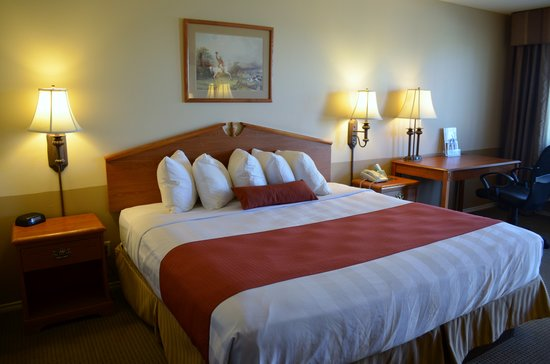 Best Western Sonora Inn: King Bed Room
