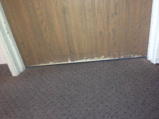 Days Inn & Suites Madison: Looks like a dog got locked in and tried to dig its way out - gross