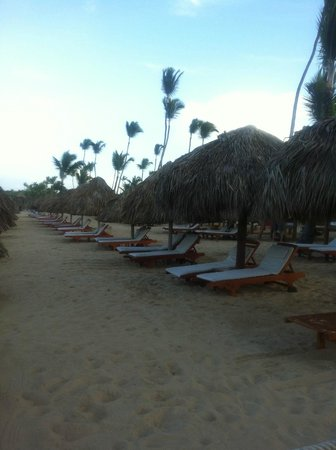 Excellence Punta Cana: beach for premium suites