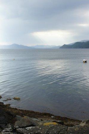 Loch Fyne Oyster Bar Cairndow: Loch Fyne oysters