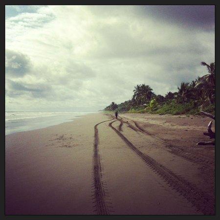 Journey L&C : Endloser Strand