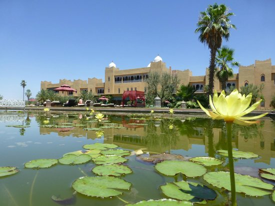 Sahara Palace Marrakech : Beautiful gardens