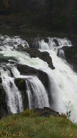 Snoqualmie Falls : Beautiful!