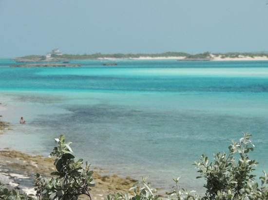 Fowl Cay Resort: The colors are unbelievable
