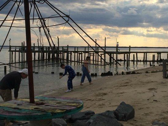 Camp Merryelande : view from the beach
