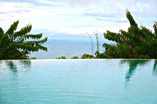 La Mariposa Hotel : infinity pool
