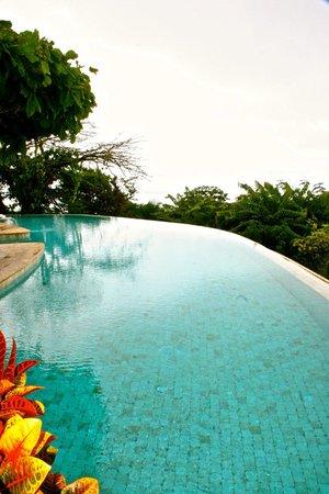 La Mariposa Hotel : infiinity pool