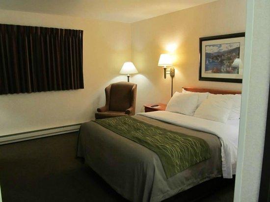 Comfort Inn: Nice decor