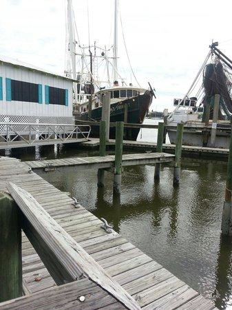 Trico Shrimp Co : Shrimp boats that deliver their fresh catch