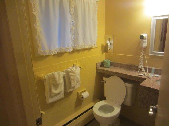 روديواي إن أورليانز: Bathroom