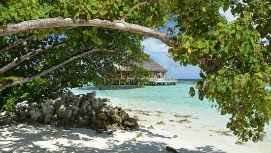 Vilamendhoo Island Resort & Spa: asian wok from beach