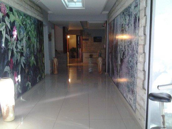 Hotel Los Alpes : corredor