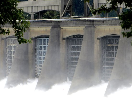 Bonneville Lock & Dam: Bonneville Dam