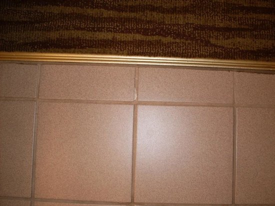 Days Hotel Buffalo Airport : Floor