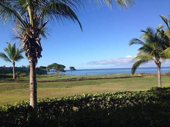 The St. Regis Punta Mita Resort: hermosa mañana desde mi habitacion