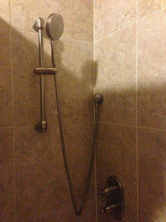 A Belizean Nirvana : Shower head