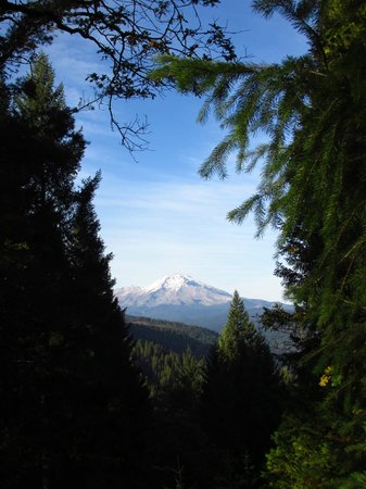 McCloud Hotel: Mt Shasta from Castle Crags Park - easy drive for views