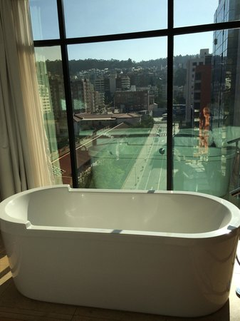 Le Parc Hotel: Bathtub with a view.