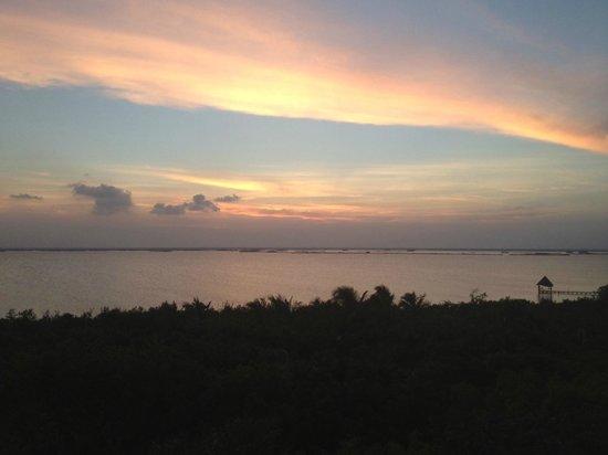 Dos Ceibas Eco Retreat : bird view