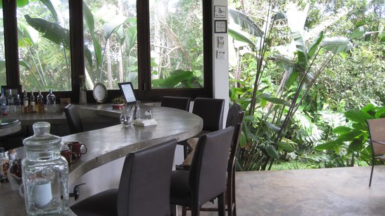 El Hotelito at the Rainforest Experience Farm: the bar, breakfast and coffe station