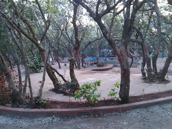Club Mahindra Mahabaleshwar Sherwood: Open Area for Kids