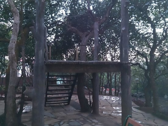 Club Mahindra Mahabaleshwar Sherwood: Tree House