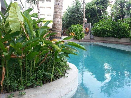 Bliss Surfer Hotel: Pool